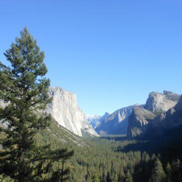 Life Detox Mantra - Yosemite
