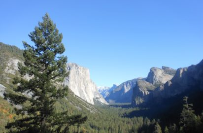 Life Detox Mantra – Yosemite